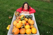 Hugelkultur part 2 :  Picking Pumpkins