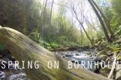 Spring On Bornholm