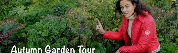 Autumn Garden Tour with Solveig Egebjerg